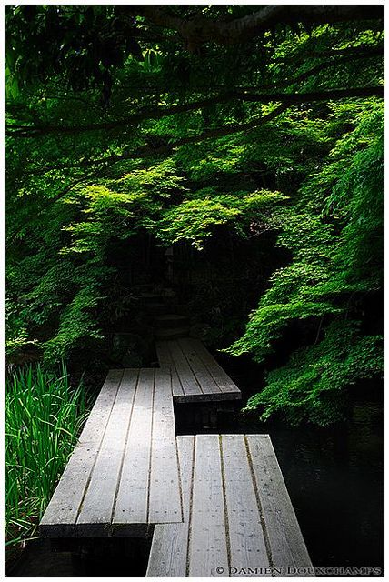 Wooden bridge in a dark corner of Tenju-an temple gardens, Kyoto, Japan | Flickr - Photo Sharing!   Like the  offset angles where bridges join