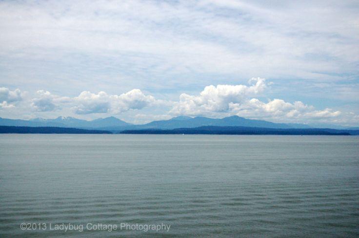 West Coast - LADYBUG COTTAGE PHOTOGRAPHY #4