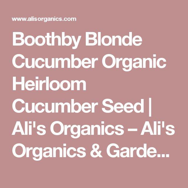 Boothby Blonde Cucumber Organic Heirloom Cucumber Seed | Ali's Organics – Ali's Organics & Garden Supply