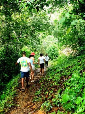 Hiking trail from San Cristobal to Rio Piedras at Chagres National Park & RIVER RAFTING + Encounter with Embera Village $ 175.