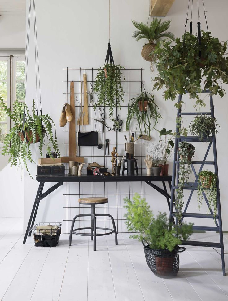 Beautiful urban jungle plants accessories contrasting the green plants against black furniture and wire wall display