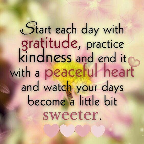 7dc0b5b382444c9d67178f9045c52a8f--better-life-wise-sayings.jpg