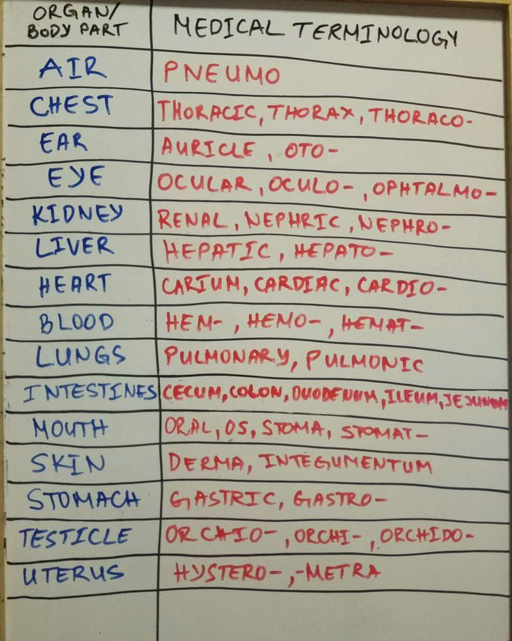 Best 25+ Medical terminology ideas on Pinterest | Medical ...