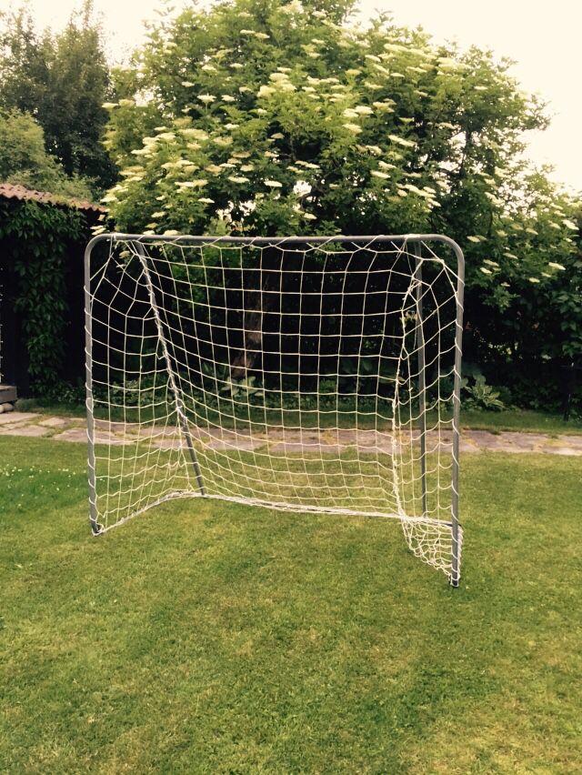 Fotbollsmål en självklar del av en barnfamiljs trädgård....