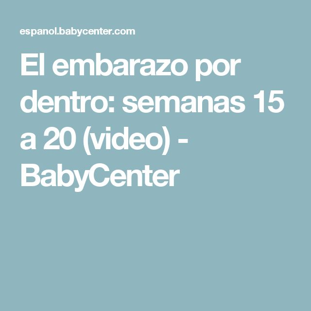 El embarazo por dentro: semanas 15 a 20 (video) - BabyCenter