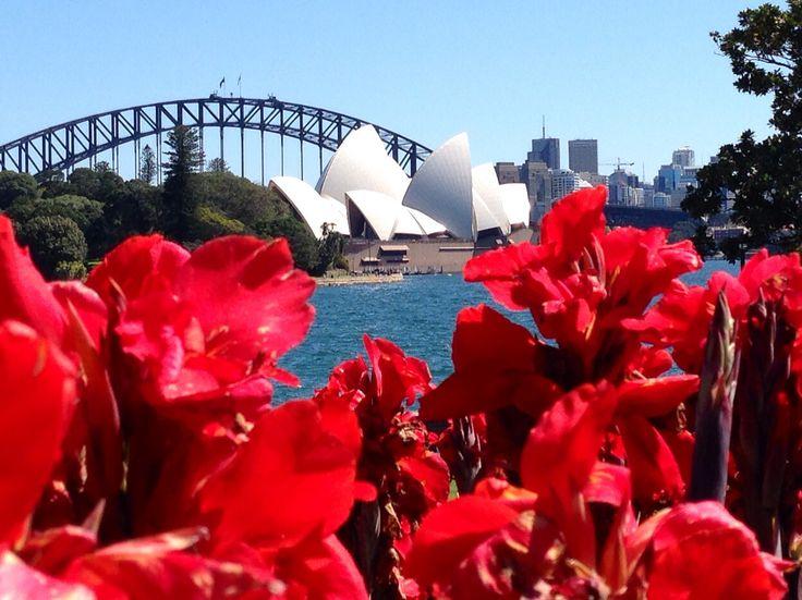 Springtime in Sydney
