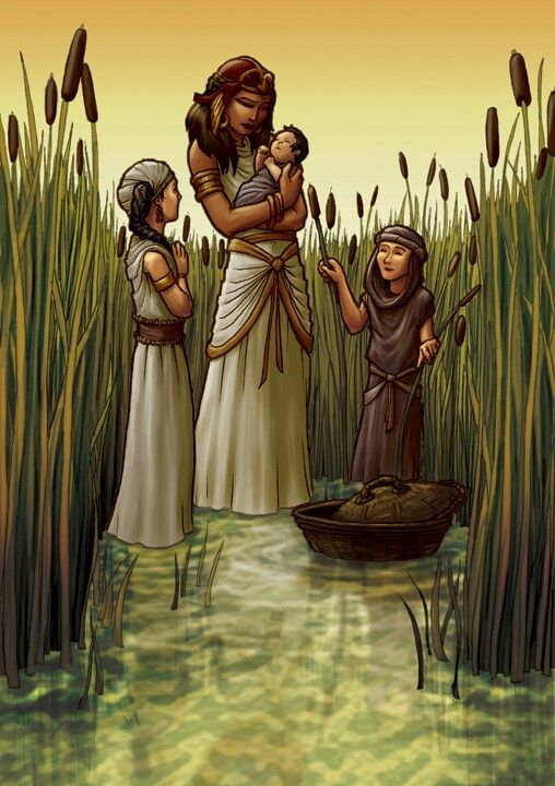 Moses among the bullrushes