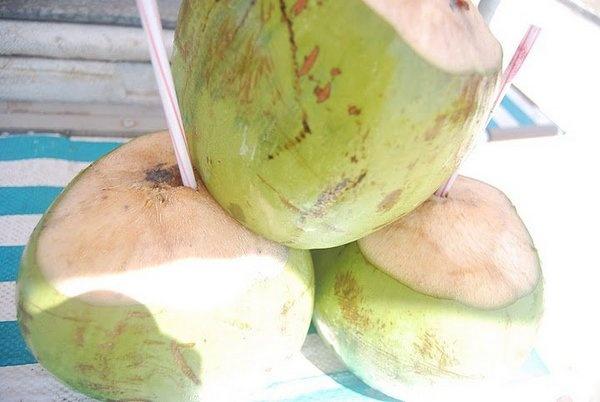 Acqua di cocco Ococo: un aiuto per dimagrire naturalmente ma non solo