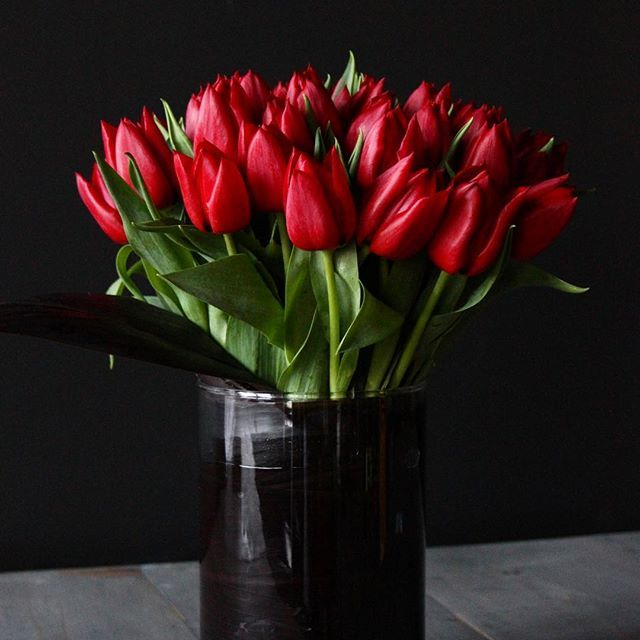 17 best images about valentine 39 s day collection on for Flowers that represent love