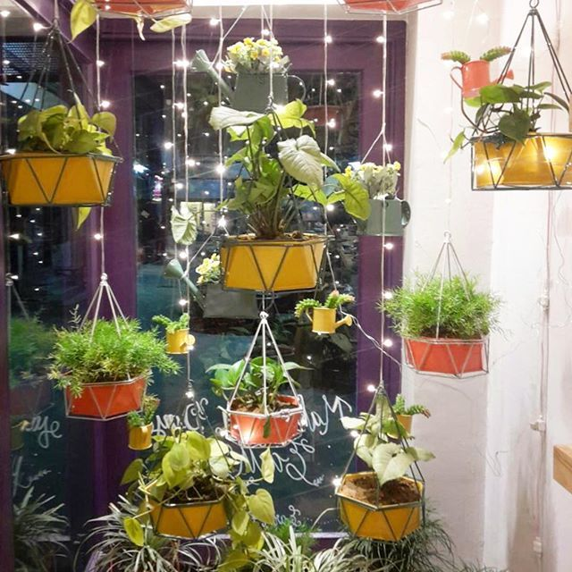 Closing time - our Earth day inspired April window with indoor plants in our new planters. We hope our coming to our #enchantedearth pop-up on 23rd April at our Gurgaon store. #gogreen #earthday #sustainability #popup #gurgaon