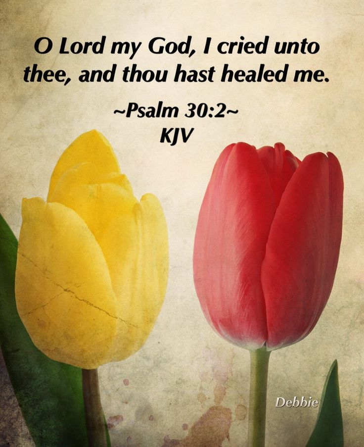1000+ ideas about Healing Scriptures Kjv on Pinterest | Healing Scriptures, Gospel Of John and Word Of God
