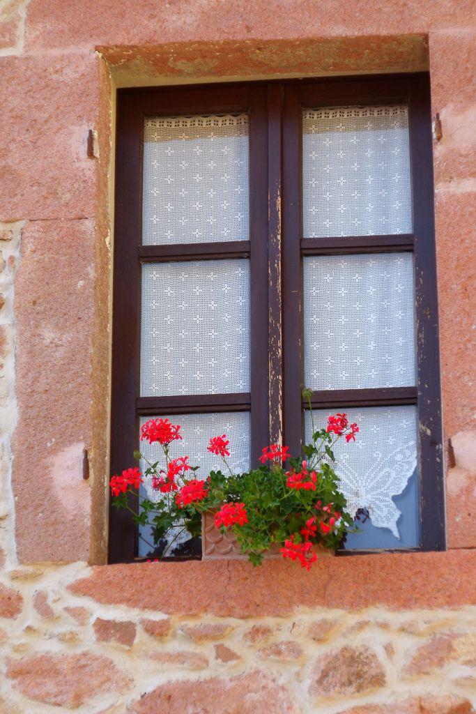Banari, finestra fiorita foto di Antonè