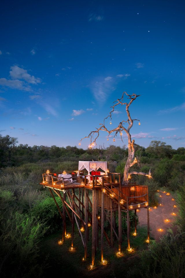Tree Huts on the Lion Sands Game Reserve in South Africa