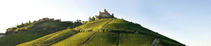Vietti - Piemonte