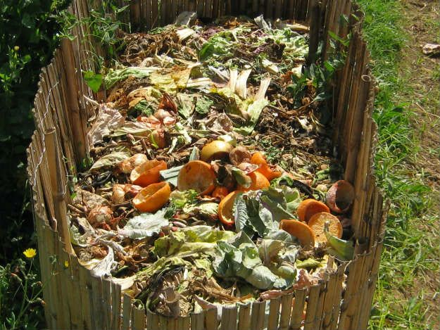 compost area Preparing Your Spring Garden Now | It's Never Too Early!