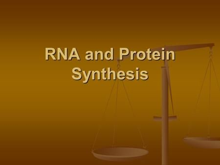 RNA and Protein Synthesis. Write these terms in your journal Ribosome — makes proteins Ribosome — makes proteins RNA polymerase — enzyme that puts together.>