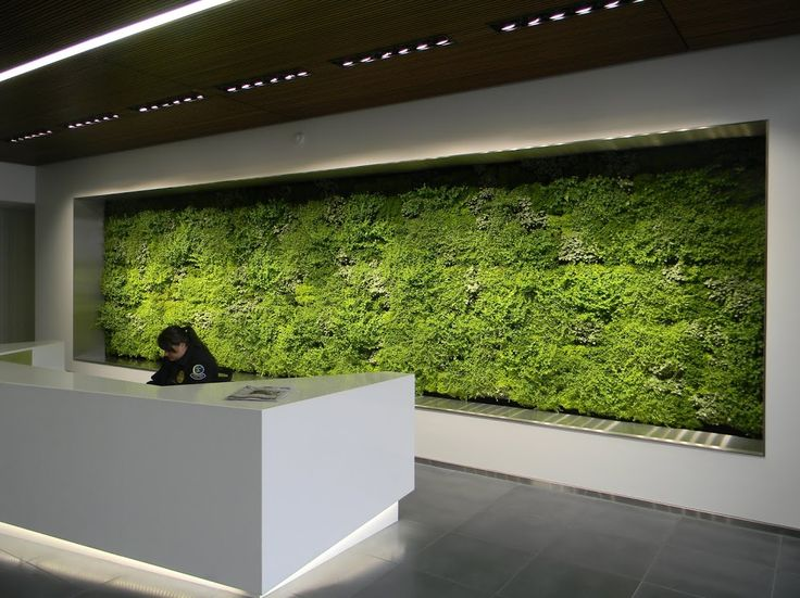 17 best images about vertical gardens on pinterest the for Vertical green wall