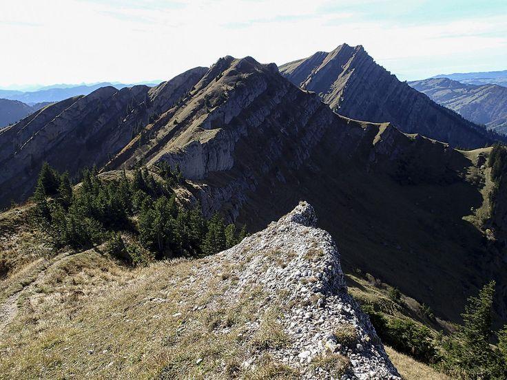 Blick zurück zum Rindalphorn und zum Hochgrat - Durchquerung Nagelfluhkette, Allgäu