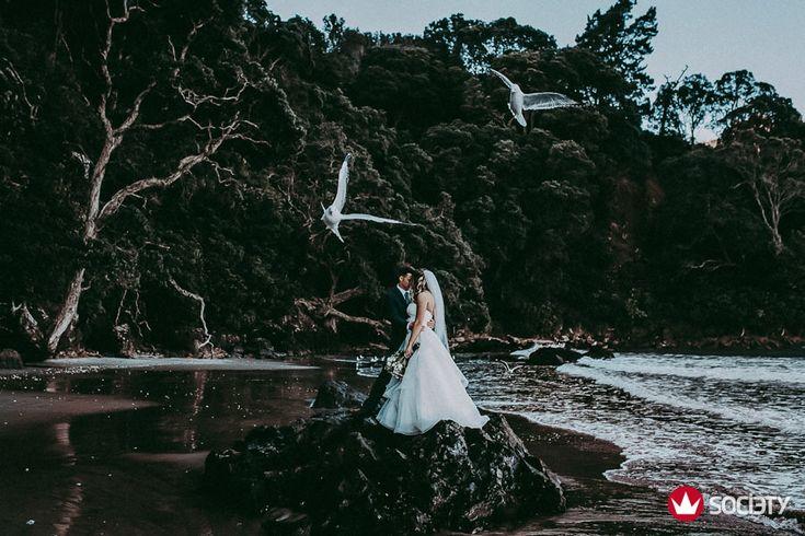 Wedding Society Award - Best wedding photographers worldwide {Auckland New Zealand weddings photographer}  http://www.levienphotography.com/blog/2017/6/6/wedding-society-award-best-wedding-photographers-worldwide-auckland-new-zealand-weddings-photographer