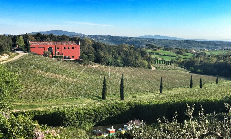Visiting Caiarossa, and Tasting & Reviewing the Wines
