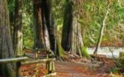 Victoria British Columbia | Tourism Victoria