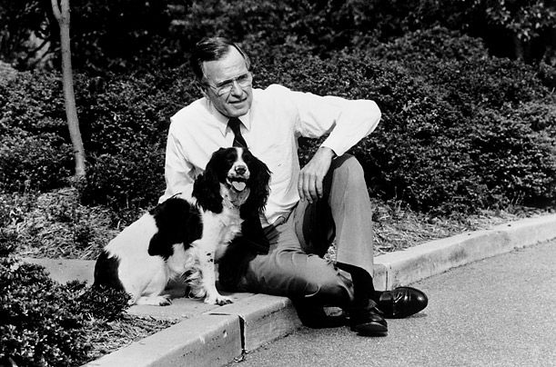 George H. W. Bush & Millie  The springer spaniel's book, Millie's Book, ghost-written by First Lady Barbara Bush, outsold her master's biography.Lady Barbara, Famous People, Barbara Bush, Georgehwbushmilliejpg 611404, Springer Spaniels, George'S H W Bush Millie'S Jpg, Spaniels Book, Millie'S Book, Presidents George