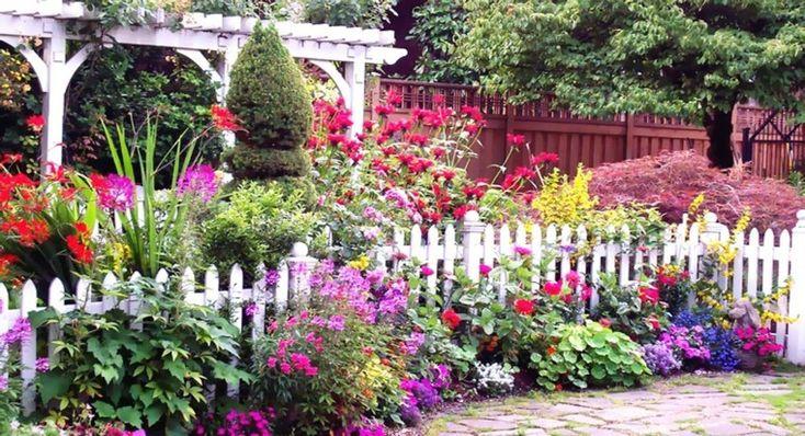 valla blanca invadida por las flores