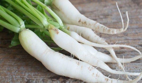 health benefits daikon radish