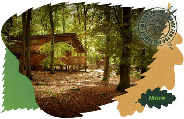 WIN a holiday in a luxury forest cabin