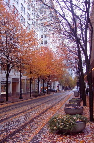 Downtown #Portland #fall