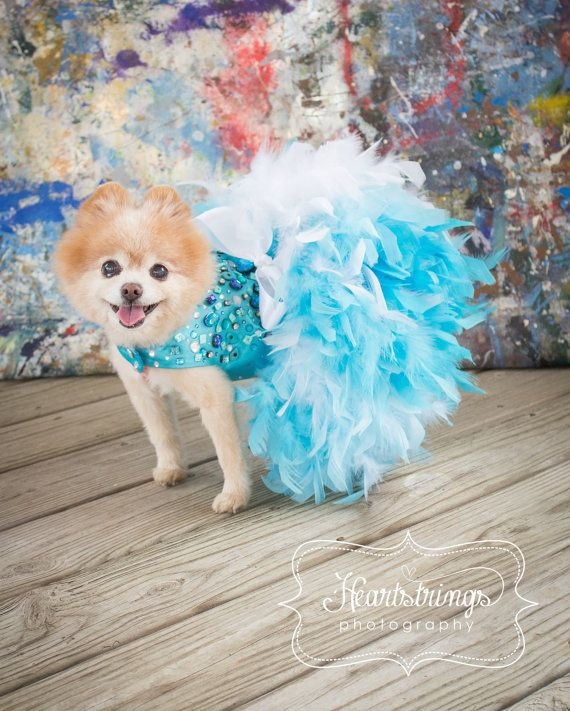 Turquoise Bling Satin Feather Harness Dog Dress от KOCouture