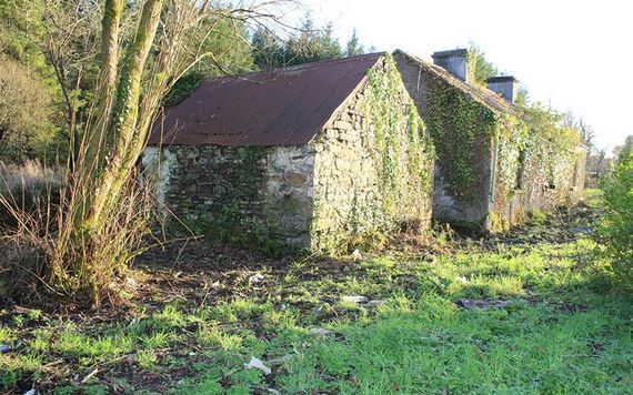 The additional outhouses of the Irish cottage up for sale. Image: REA Brady.