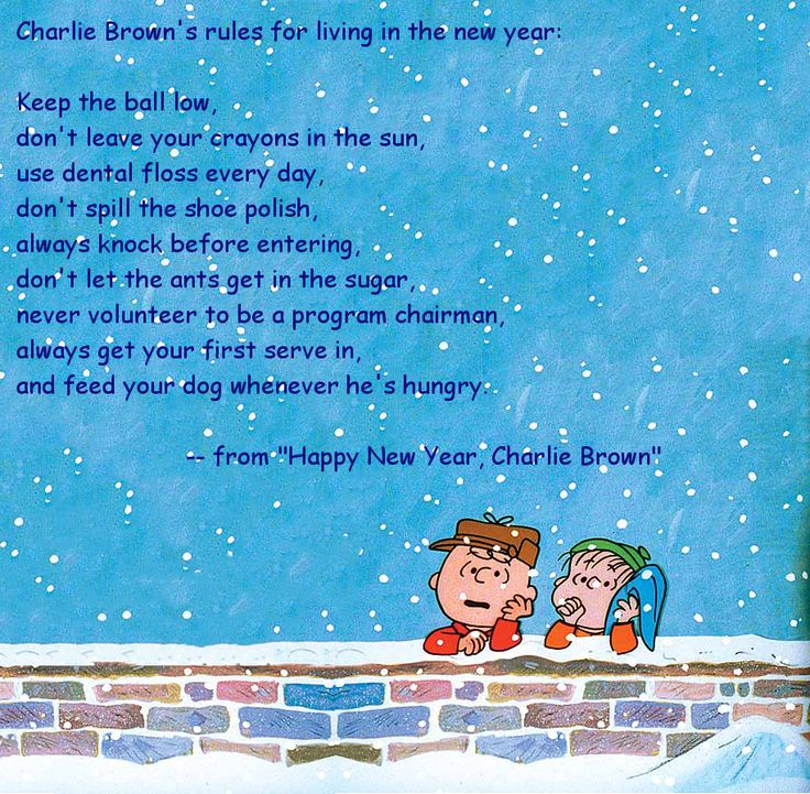 "Charlie Brown's rules for living in the new year, from ""Happy New Year, Charlie Brown""  http://www.imdb.com/title/tt0123099/"
