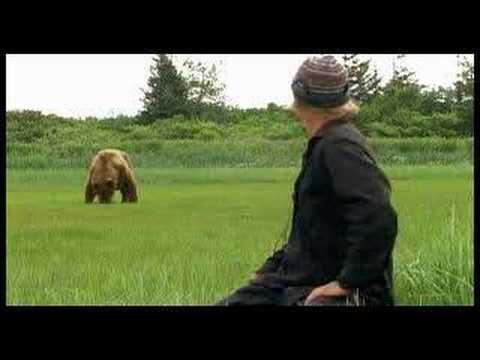 Grizzly Man- Timothy Treadwell