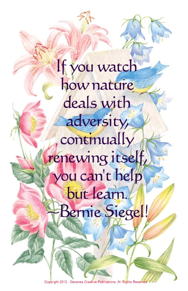 Bernie Siegel, M.D.
