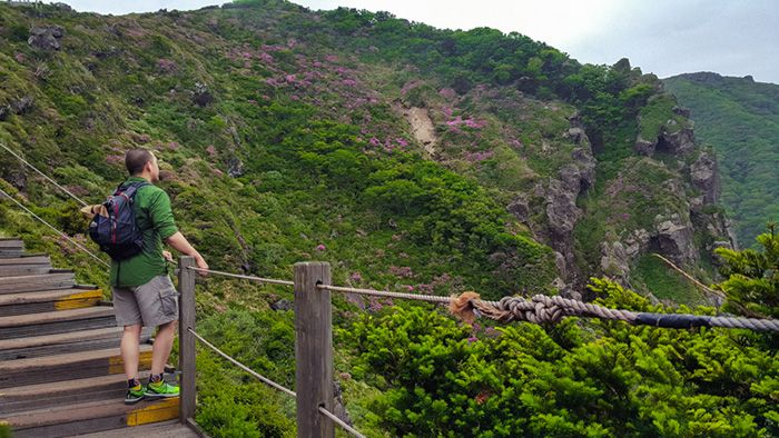 Dwidaya Tour | Agent Tour and Travel, Reservation Hotel | Inilah 8 Pesona Menakjubkan di Jeju Island, Pulau Vulkanik dari Korea Selatan