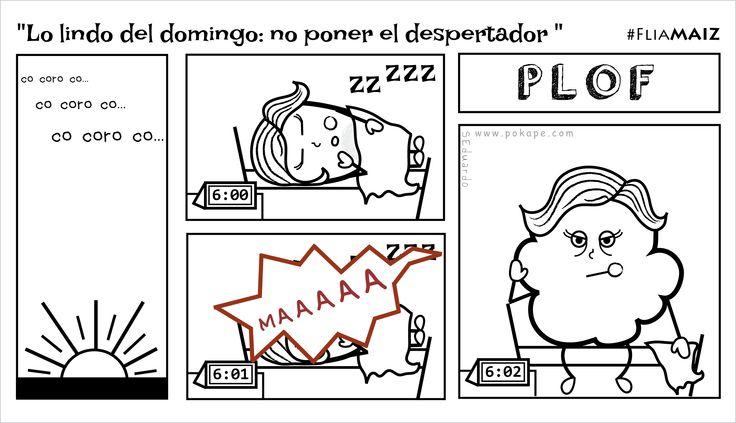 """""""Lo Lindo del Domingo: No Poner el Despertador"""" #FliaMAIZ"""