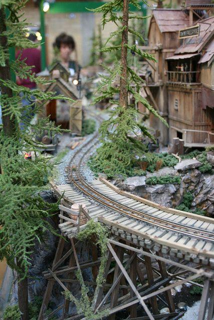 Logging Railroad | Twin Falls Logging & Mining Railroad - On30 | Flickr - Photo Sharing! Model train in the garden.