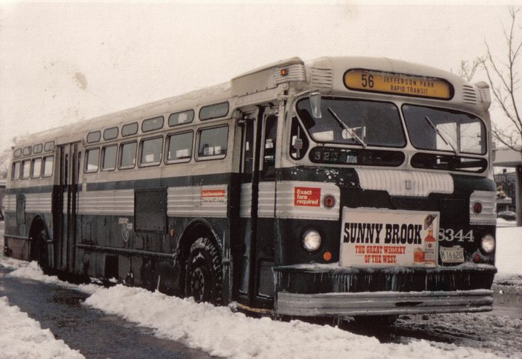 FAEGOL TWIN COACH, CHICAGO New bus, Rapid transit