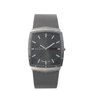 Skagen Denmark Mens Titanium Watch