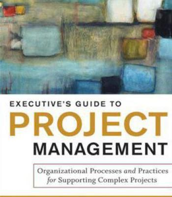 Executive's Guide To Project Management: Organizational Processes And Practices For Supporting Complex Projects PDF