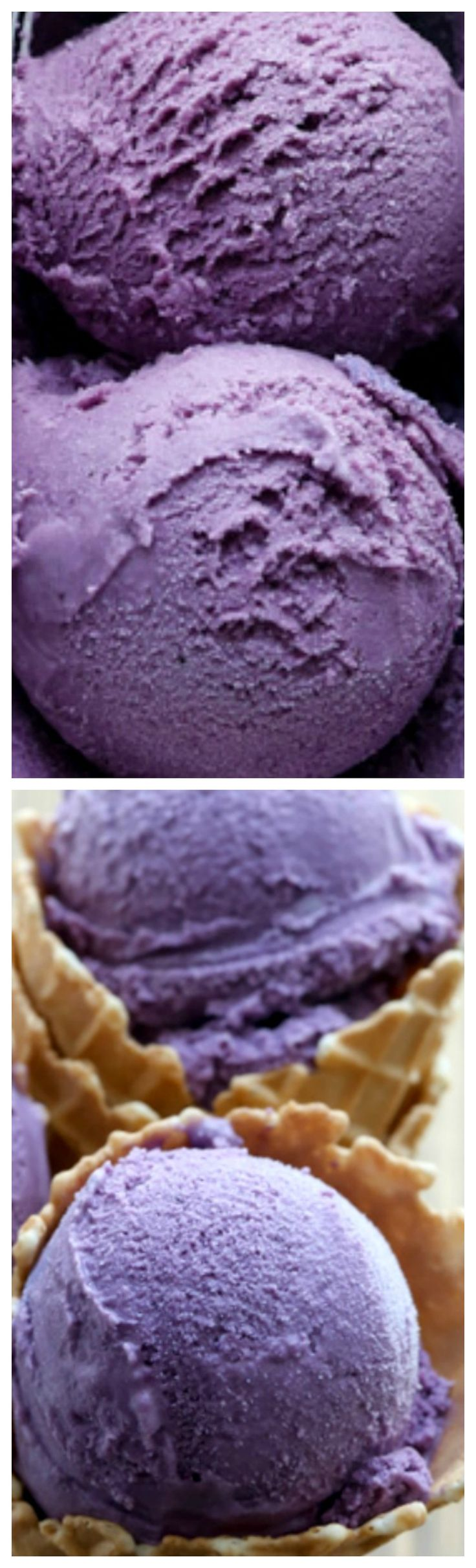 Blueberry Ice Cream ~ Creamy homemade blueberry ice cream bursting with flavor!