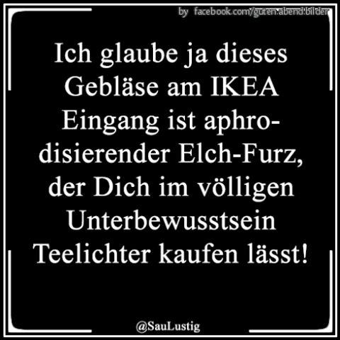 #laugh #lustigesding #funnypics #humor #sprüchezumnachdenken #lustig #ironie #funnypicsdaily