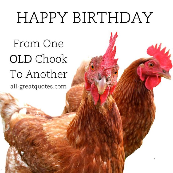 19 best F images – Free Birthday Card Wishes