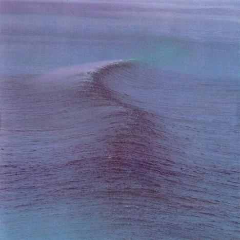 The Swell: Favorite Music, Grey Whales,  Gray Whales, Interesting Music,  Eschrichtius Robustus, Music Album,  Eschrichtius Gibbosus, Music Art,  Devilfish