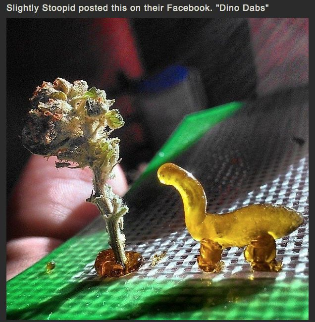 """Prehistoric High: """"Dino Dabs"""" via Slightly Stoopid - Summer line up with NOFX and Cypress Hill ❤-tblazes."""