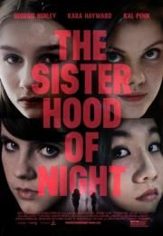 "The Sisterhood of Night        The Sisterhood of Night      Ocena:  6.30  Žanr:  Drama Mystery Thriller  ""The Salem Witch Trials remixed.""When Emily Parris exposes a secret society of teenage girls who have slipped out of the world of social media and into another world they've discovered in the woods at night. When she accuses the girls of committing sexually deviant activities Emily sends the small American town into a atmosphere of hysteria and the national media spotlight. The mystery…"