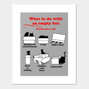 What to do with an empty box - cat edition by DigitalCleo on @teepub  #cats #cat #adoptdontshop #kittens #cute