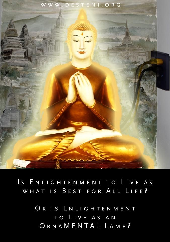 A Woman's Journey to Life: Is Meditation the Key to Enlightenment? http://mayaprocess.blogspot.com/2012/12/is-meditation-key-to-enlightenment.html