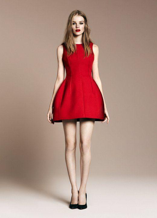 Love this Zara dress!
